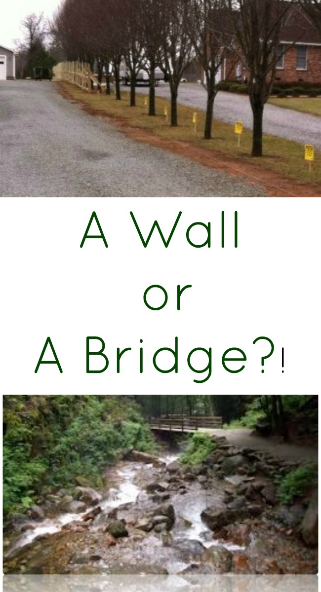 A WALL or a Bridge pintrest