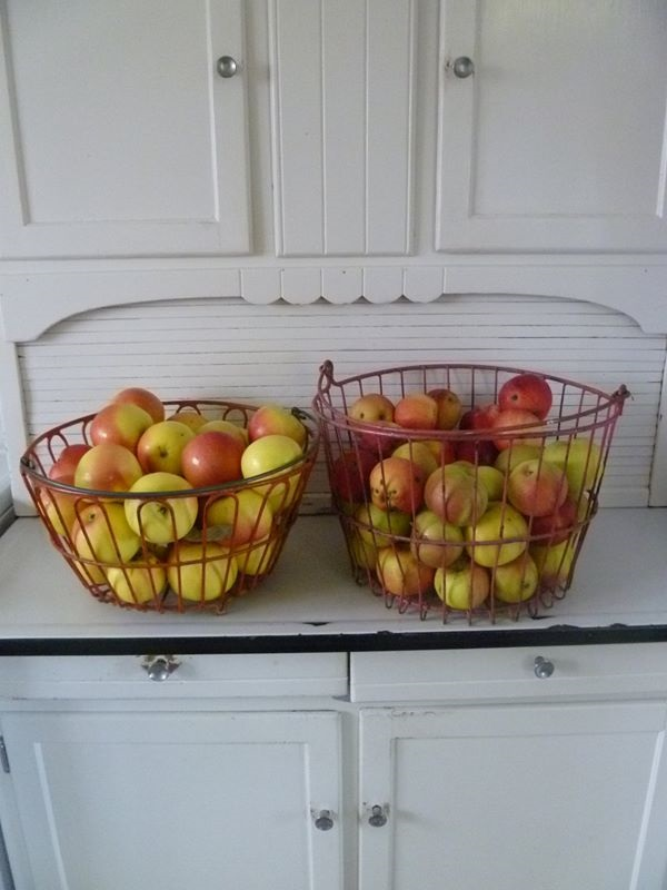 apples picture from Rachel