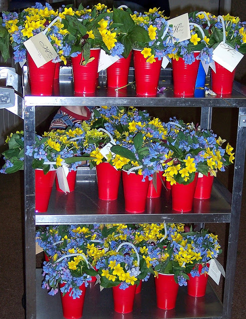 Ready for delivery: bluebells, marsh marigolds, and other flowers proclaim that spring is here!