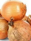 onions 2