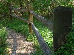 GARDEN PATH bench