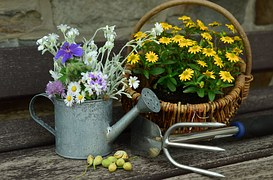 GARDEN flowers in basket