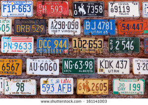TRAVEL license plate game