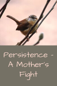 Pinterest persistence mother's fight