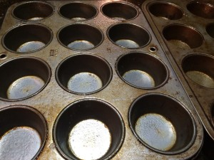 blueberries muffin tins