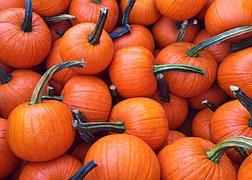 pumpkins small group