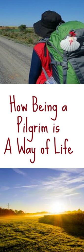 pinterest pilgrim