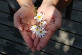 drummer boy hands daisies