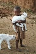 drummer boy w ith lamb