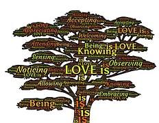 joseph embrace tree