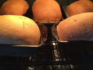 rye baking in oven