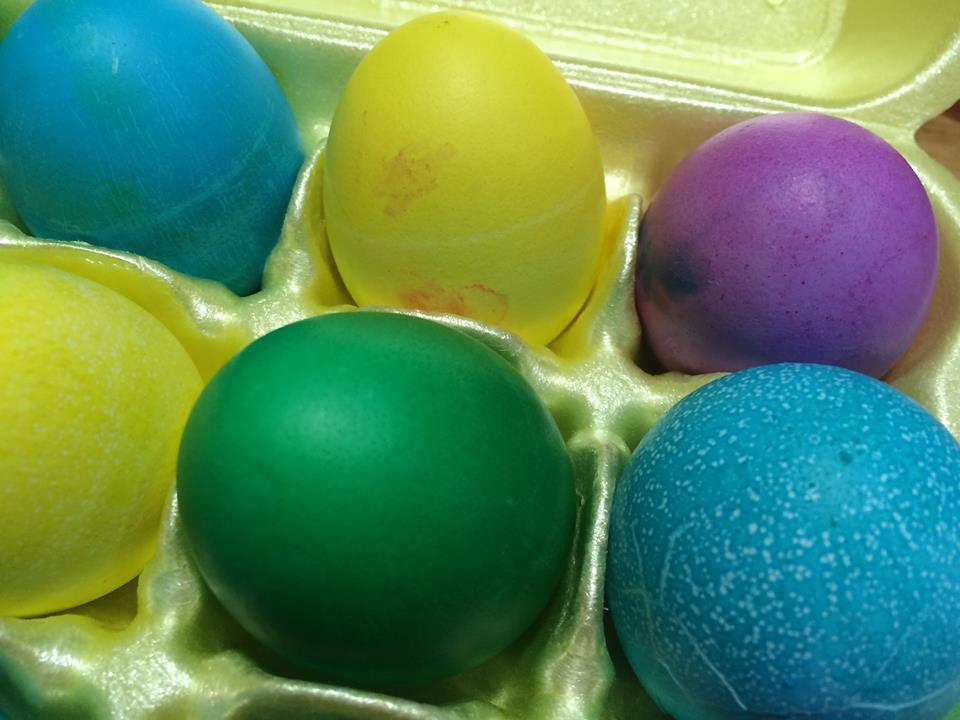 eggs colored in carton