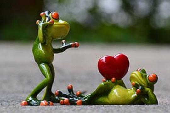 frog heart 2