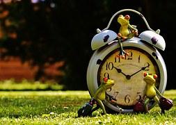 pray frog time