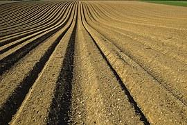plow-field-soil
