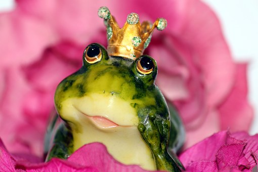 Fairy Tale marriages do not come from kissing a frog