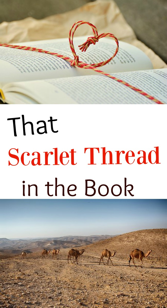 Pinterest Scarlet Thread