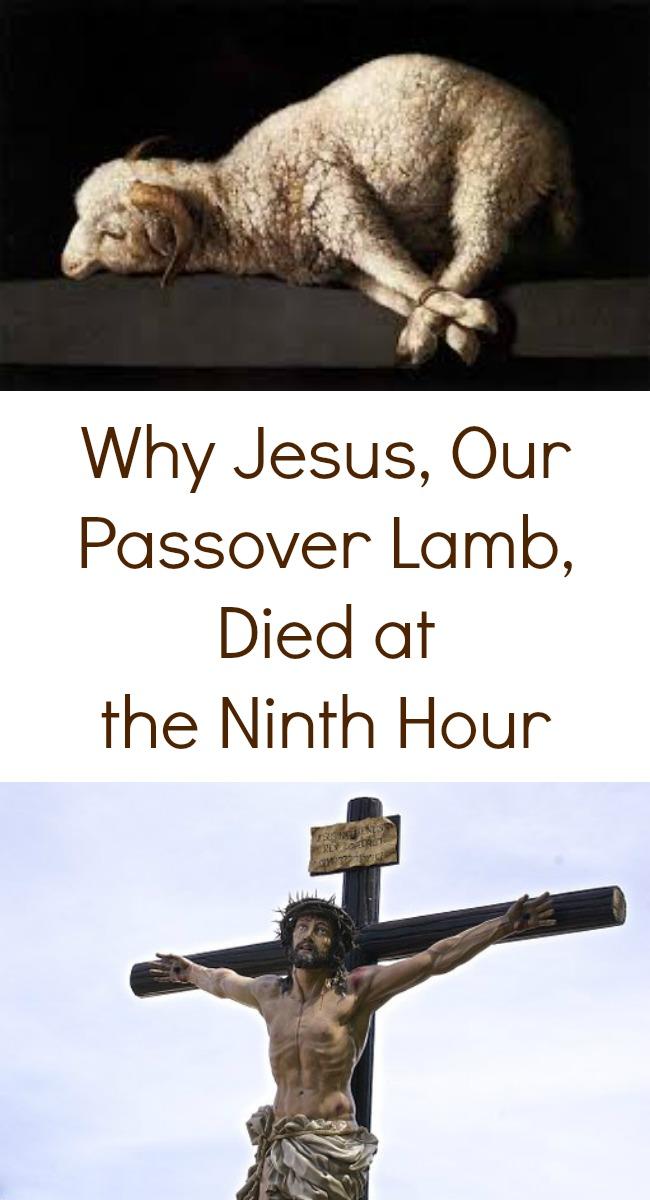 Pinterest Ninth Hour Passover Lamb