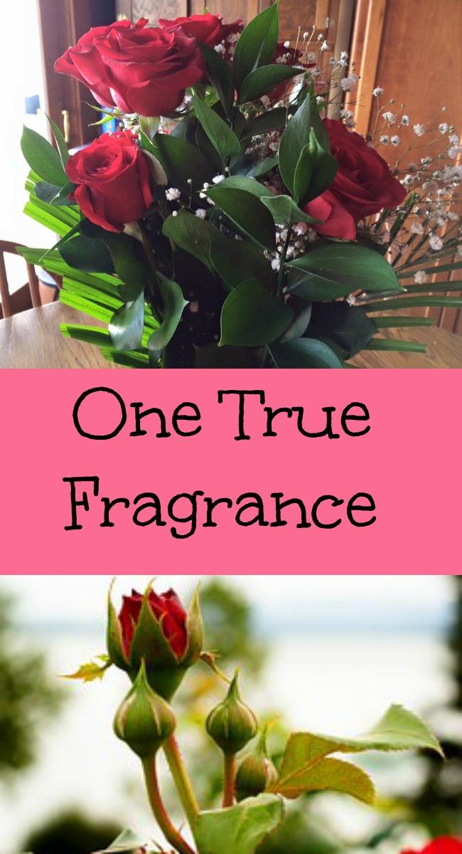 pinterest fragrance