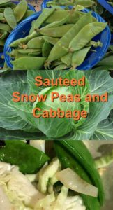 snow peas and cabbage