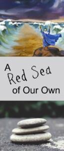 pinterest Red Sea