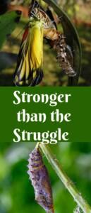 Pinterest Stronger than the Struggle