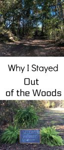 Pinterest Out of the Woods