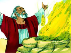 Noah a type of Christ