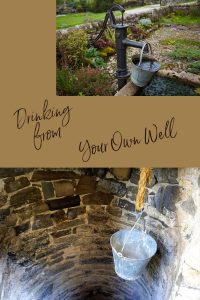 your own well pinterest
